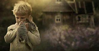 дар эмпата любовь к животным