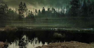 Случай на болоте