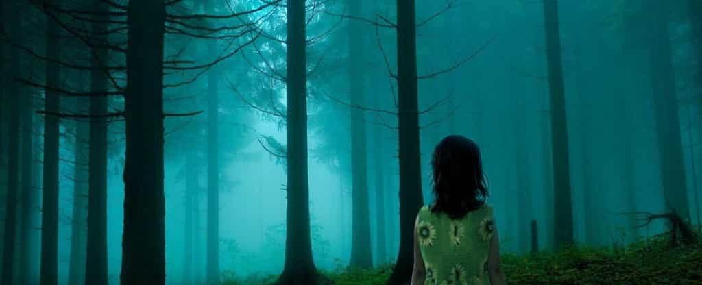 Девушка потерялась в лесу