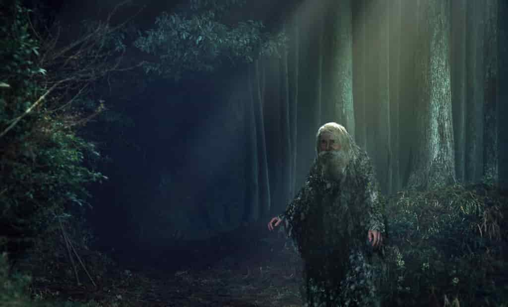 Красивая картинка старичок - лесовичок