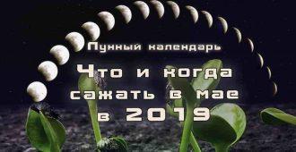 Лунный посевной календарь май 2019 года