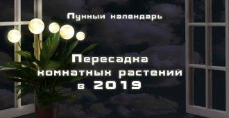 Лунный календарь цветовода 2019 пересадка комнатный растений