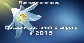 Лунный календарь садовода апрель 2019