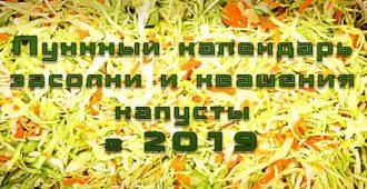 Лунный календарь засолка капусты 2019