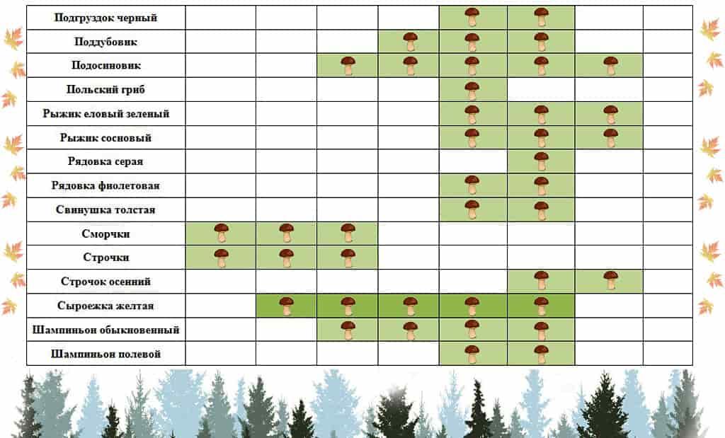 Календарь сбора грибов 3 часть
